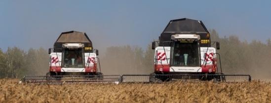 Экспорт органических продуктов из Томской области вырос вчетверо