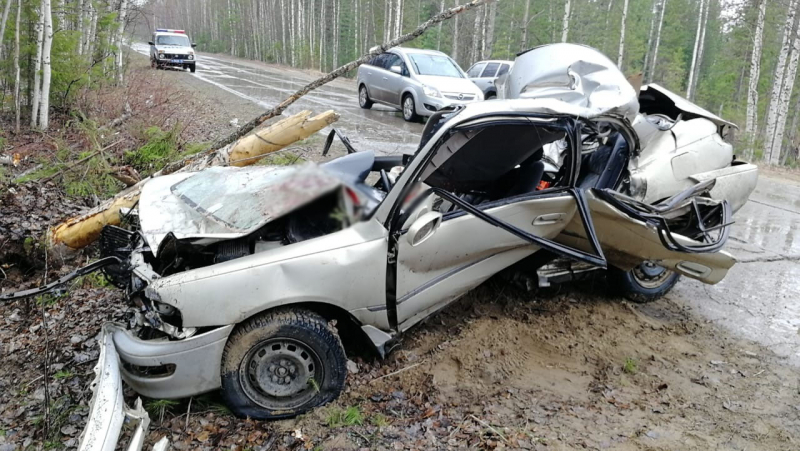 В ДТП на севере Томской области погиб водитель