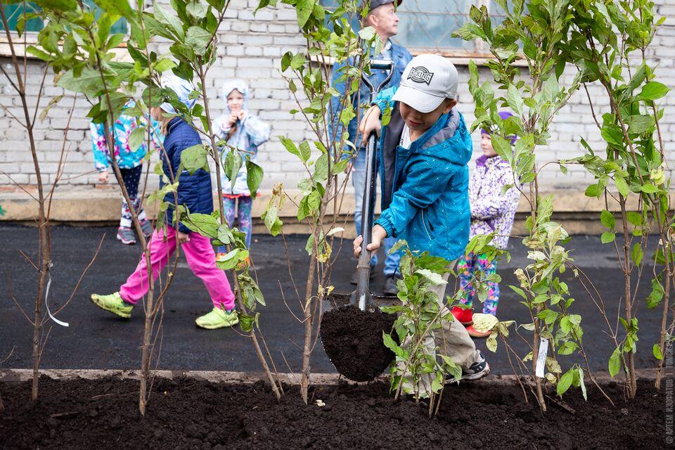 Активисты ТОС займутся озеленением общественных пространств Томска