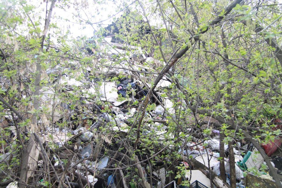 Тарелки летают в окна: в Крутоовражном огромная свалка