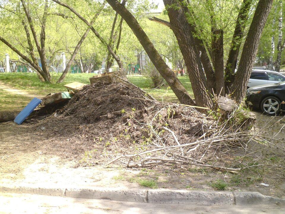 Деревья спилили, ветки остались: жители частного сектора боятся пожара