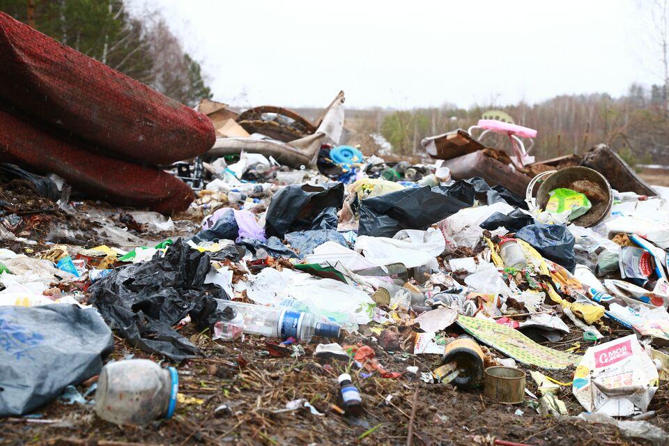 Томский бизнес платит за мусор больше всех в Сибири