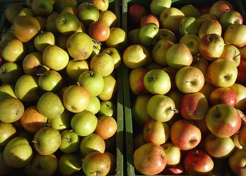 Яблочный Спас: 10 главных правил и традиций