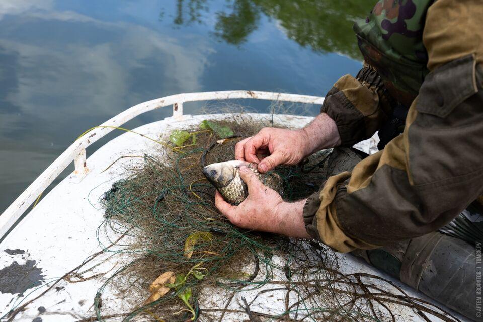В томских водоемах спасли рыбу на 2 миллиона рублей