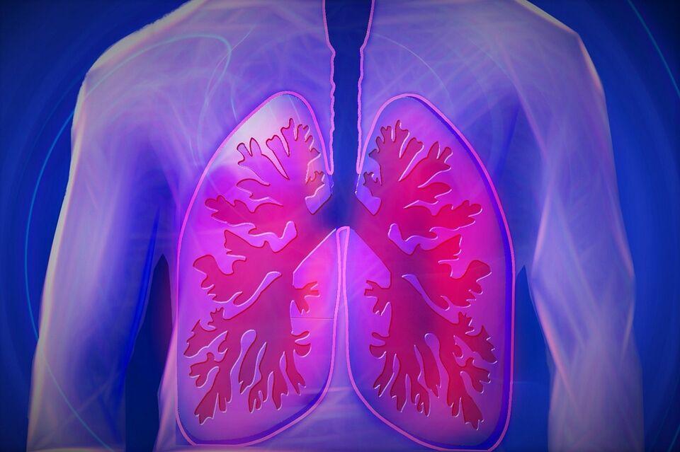 Ученые СибГМУ нашли наследственную предрасположенность к туберкулезу