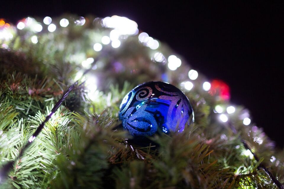 Первые городские елки с новогодней иллюминацией радуют томичей