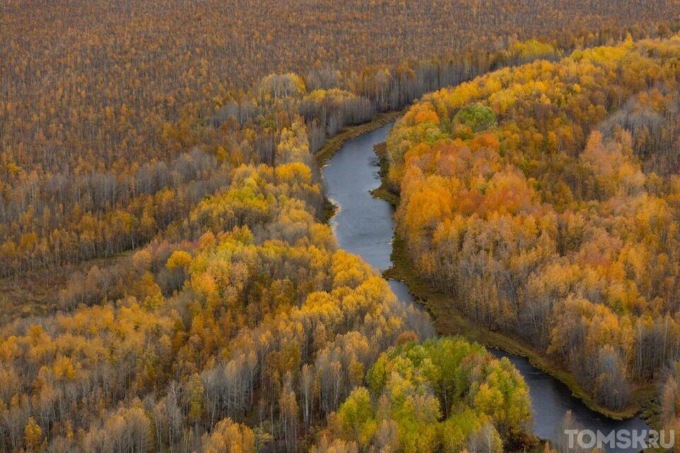 Васюганские болота. Центр мира: идеальное удобрение из торфа