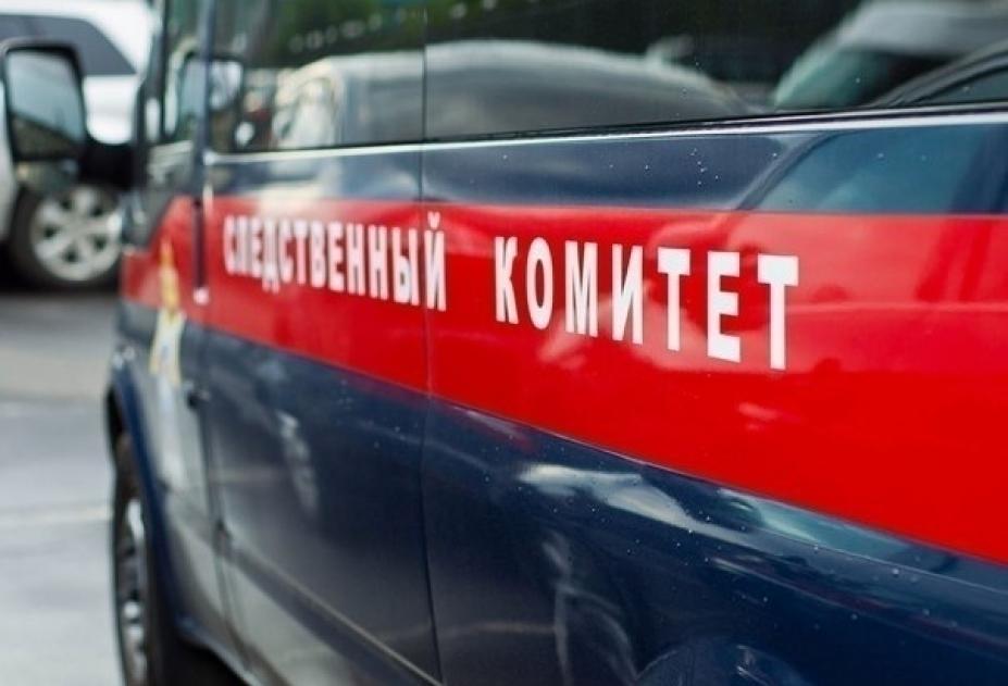 Жительница Томской области пойдет под суд за жестокое убийство ребенка