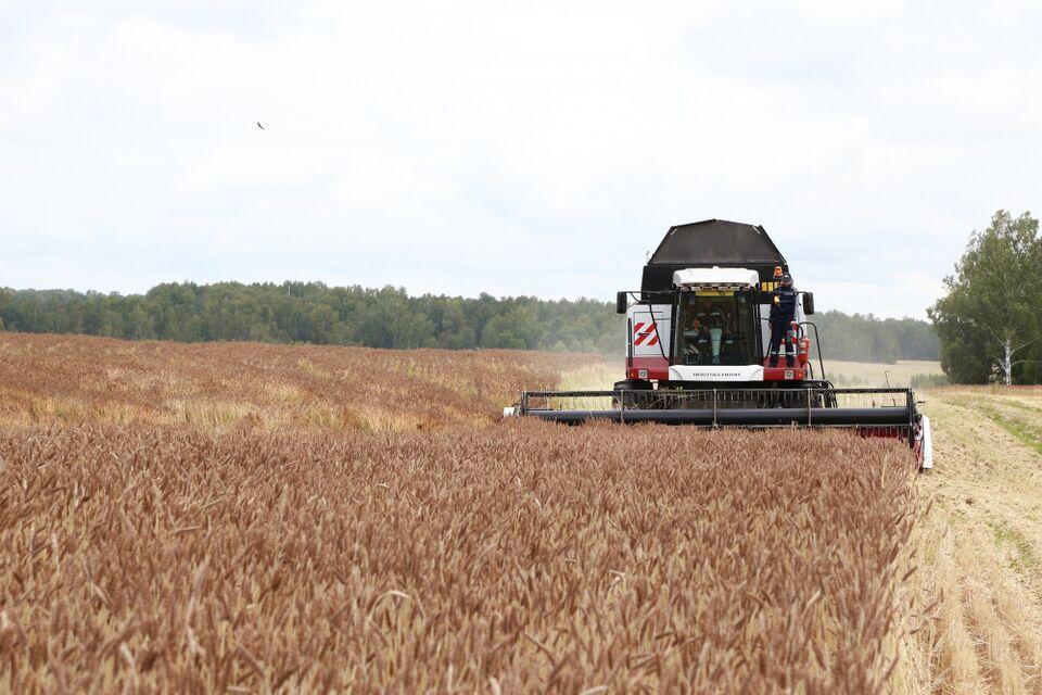 Губернатор Томской области подвел итоги года на агрособрании региона