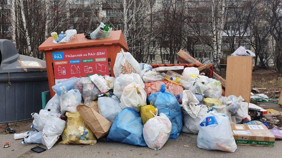 В России сортирующим мусор могут снизить плату за вывоз отходов