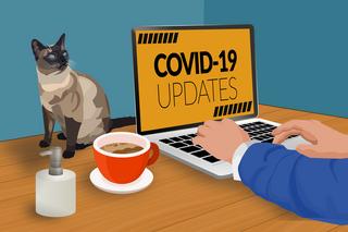 Топ-4 приложений для эффективной удаленной работы при коронавирусе