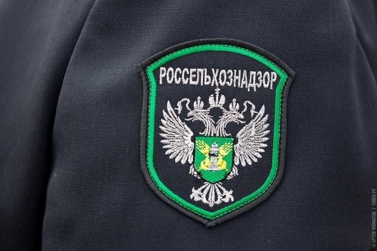 Эксперты уничтожили партию семян алтайского укропа