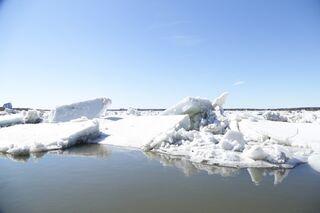 Томь пошла: на реке начался ледоход