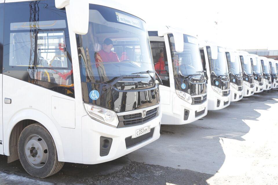 Томичи смогут уехать на автобусах в другие регионы