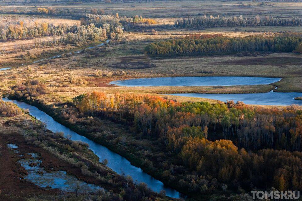 Парк семейного отдыха собираются создать рядом с Васюганским болотом