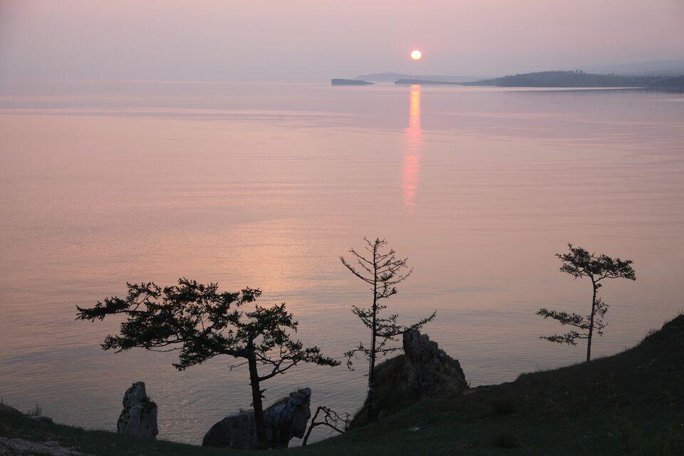 Сплошную вырубку леса разрешили на Байкале