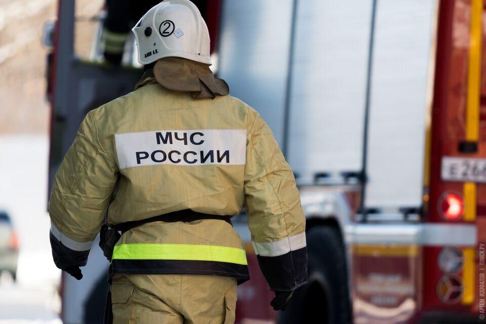 В деревне Томской области из-за пожара погибло множество животных