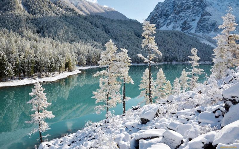 Группа ученых потерялась в горах Алтая