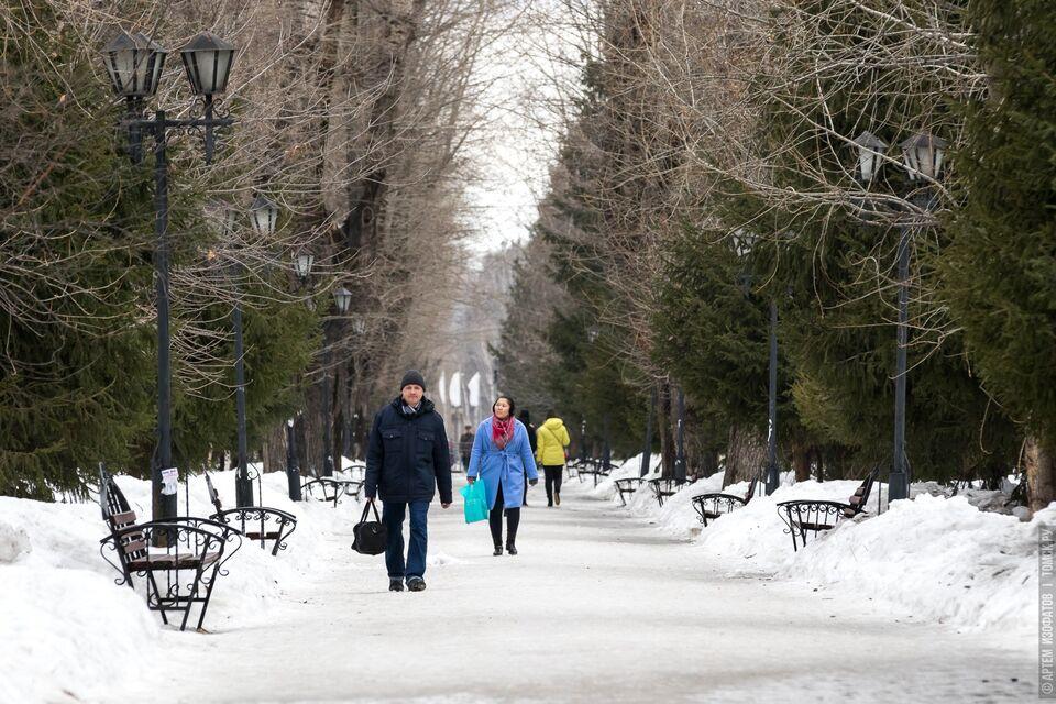 Еще 181 новый случай COVID-19 обнаружили в Томской области