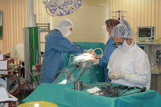 Без голодания и изнуряющих тренировок: омские хирурги лечат ожирение радикальным способом