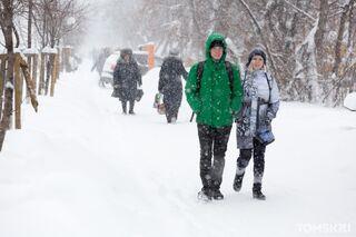 Больше 29 000: в Томской области подтвердили новые случаи COVID-19