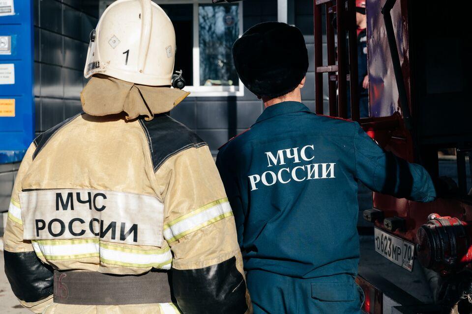 Куры, козы и свиньи погибли в пожаре в Томской области