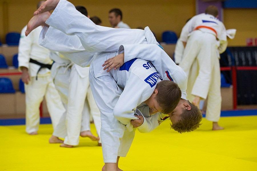 Золото и бронза: томские дзюдоисты привезли две медали со всероссийских соревнований