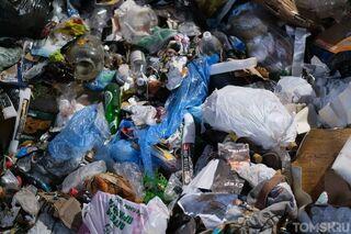 Ресторан и кофейня на улице Белинского выбрасывают мусор в баки томичей