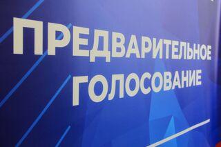 Два дня осталось для подачи заявлений от кандидатов предварительного голосования