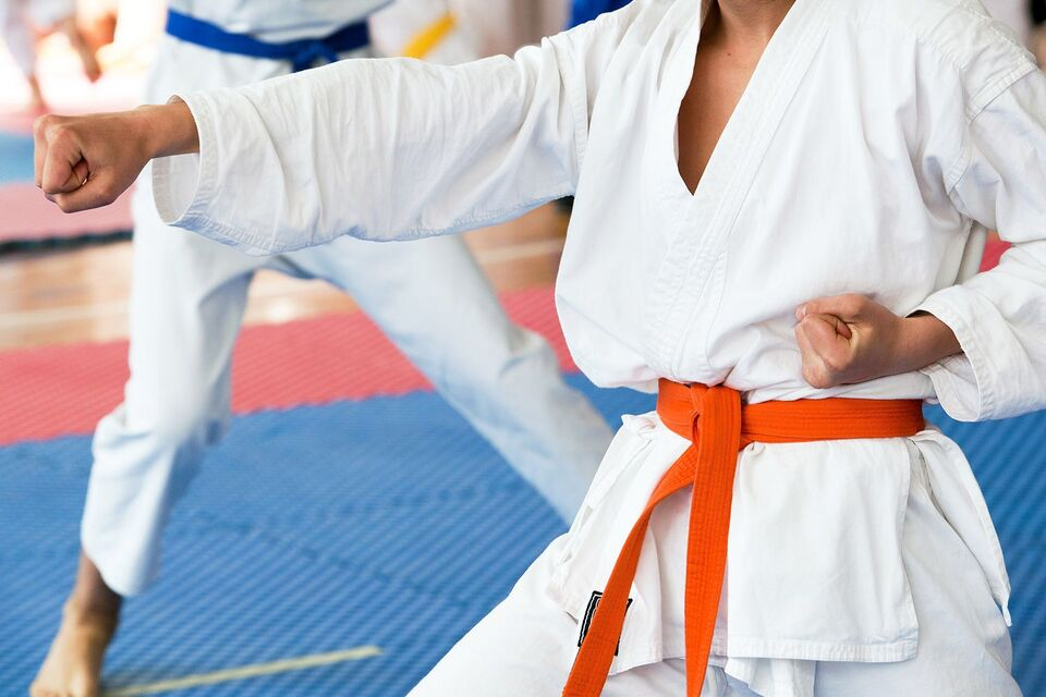 Томич взял бронзу на чемпионате России по всестилевому карате