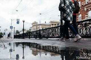 +93: новые случаи заражения коронавирусом в Томской области