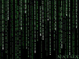 Отмечаем день программиста