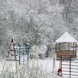 Среди жителей холодных регионов России набирает популярность страхование самого необходимого - зимних предметов одежды.  В Тюмени было зафиксировано 53 случая страхования шуб.