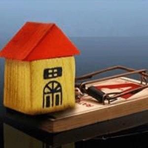 Рынок аренды жилой недвижимости отреагировал на текущую ситуацию на финансовых рынках прогрессирующим оживлением. Осенний период всегда был одним из самых активных на рынке аренды квартир, к тому же, некоторые из покупателей, планировавших приобретение недвижимости, переориентировались на аренду.