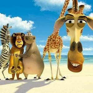 """Анимационный фильм """"Мадагаскар 2"""", вышедший на российские экраны на этой неделе, по сборам за первый день опередил все голливудские фильмы, когда-либо выпускающиеся в России."""