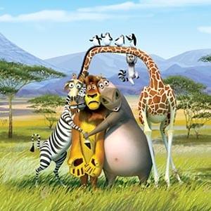 """Новый анимационный фильм """"Мадагаскар 2"""" в первые выходные побил все рекорды по кассовым сборам в России и теперь претендует на звание самого кассового фильма за всю историю российского кинопроката. Сенсационные сборы за первые дни проката составили почти 719 млн рублей ($27 млн)."""