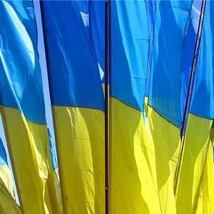 Украина потеряла 3,1% объема промышленного производства по итогам 2008 года. Кроме того рост ВВП страны в прошлом годы сильно замедлился, не дотянув до без того пониженных прогнозов Министерства экономики.