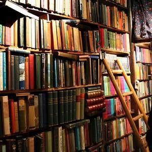 2009 года может стать роковым для 30%-45% российских книжных магазинов и киосков. Кроме того, эксперты ожидают заметного сужения рынка литературы. Тем временем, уже в январе наступившего года из-за роста оптовых цен книги подорожали в среднем на 10%.
