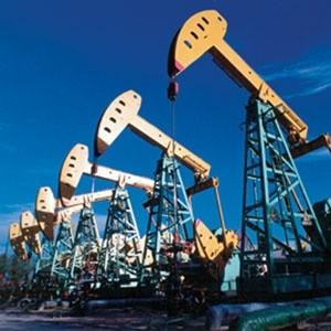 Вице-премьер России Игорь Сечин считает, что нефтегазовый сектор развивается успешно. Об этом он заявил на церемонии ввода в эксплуатацию компанией ТНК-ВР Уватского проекта.