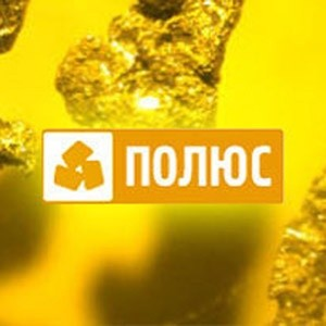 """ИК """"ФИНАМ"""" присвоила целевую цену обыкновенным акциям ОАО """"Полюс Золото"""" на конец 2009 года на уровне $25,5 за штуку. Рекомендация по данным ценным бумагам – """"Продавать"""". Среди главных преимуществ """"Полюс Золота"""" аналитики отмечают огромную сырьевую базу, тем не менее, они пока не видят эффективного механизма ее трансформации в адекватные денежные потоки для акционеров."""