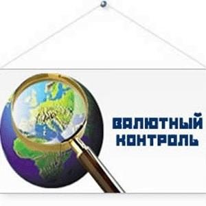 Председатель Центрального банка РФ Сергей Игнатьев выступает против введения мер валютного контроля и рассчитывает на поддержку его точки зрения в правительстве.