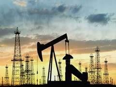 Государственная нефтяная компания Турции (ТПАО) получила право проводить работы по разведке нефти в Средиземном море за пределами территориальных вод страны.